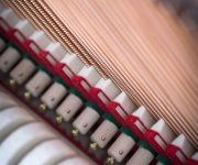 122_Detail_12_hammers_strings_web